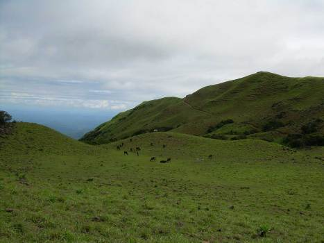 Mandalpatti (1)