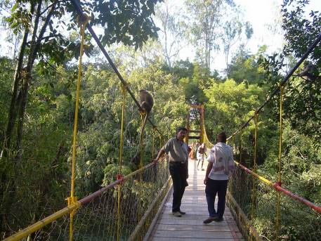 nisargadhama-hanging-bridge