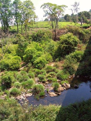 4-Bharapole-River-flowing-besides-Glenlorna