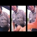 Fairfax County Cop Snatches Camera from Motorist