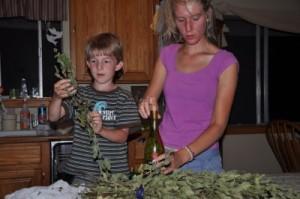 rachel-Orindary-herbsDSC_0162_7717
