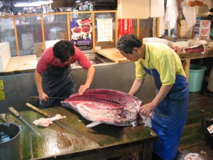 tokyoOroshi_hocho_Tuna_Knife