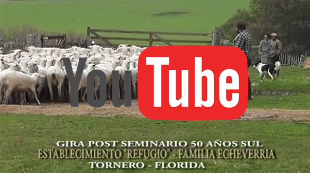portada-youtube-gira