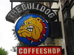"""A Luglio Roma Apre Coffeeshop Il Corriere Primo """"bulldog"""" d8RqR6wH"""