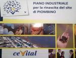 il piano industriale di Cevital