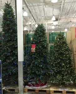 Costco Christmas Trees