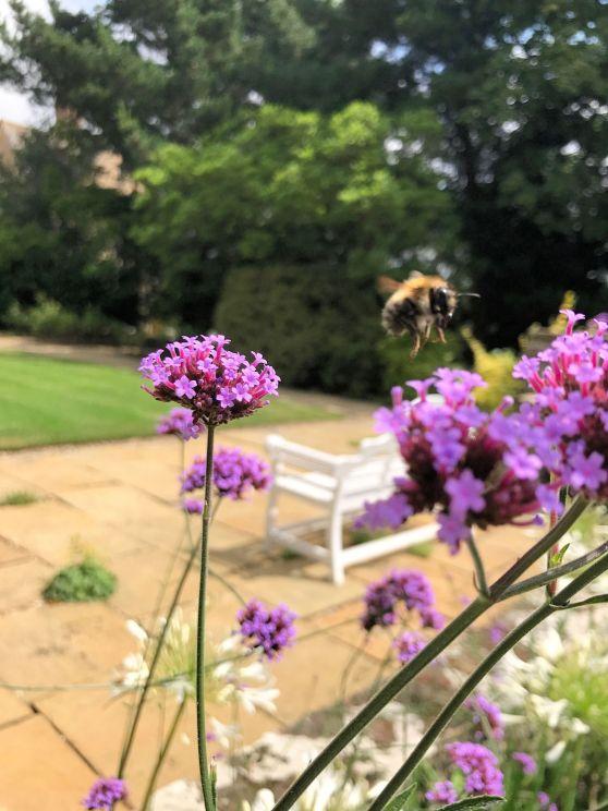 mallory-court-garden-cotswolds-concierge (15)