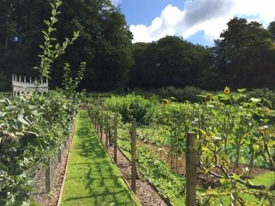 painswick-rococo-garden-summer-cotswolds-concierge (52)