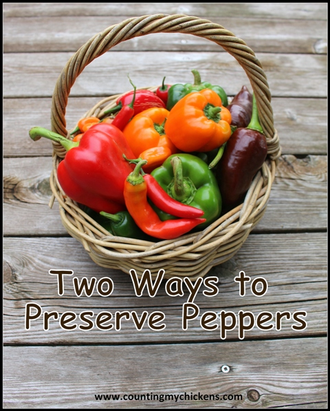 Two Ways to Preserve Peppers