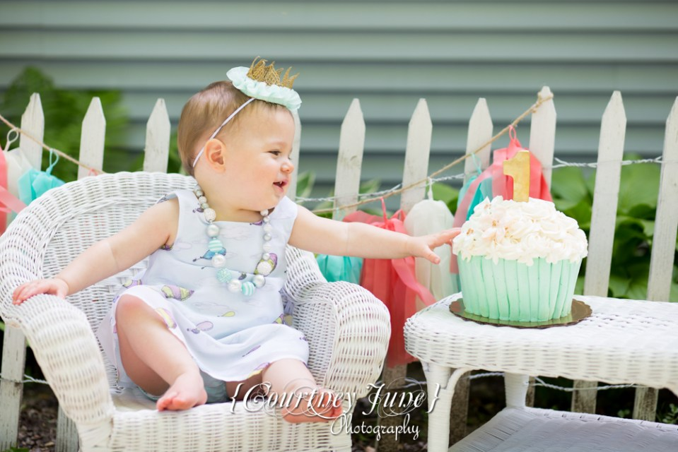 first-birthday-party-dr-suess-minneapolis-family-photographer-first-birthday-photographer-14