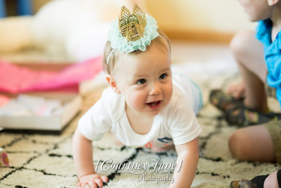 first-birthday-party-dr-suess-minneapolis-family-photographer-first-birthday-photographer-44