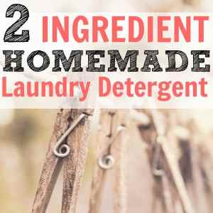 2 Ingredient DIY Laundry Detergent