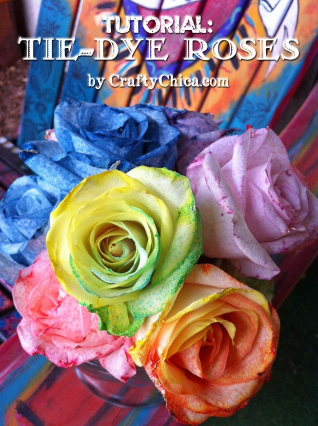 Make tie dye rainbow roses crafty chica for Rainbow dyed roses