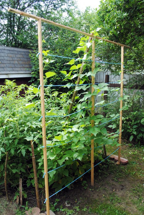 DIY Garden Trellis Tutorial Crafty Sauce