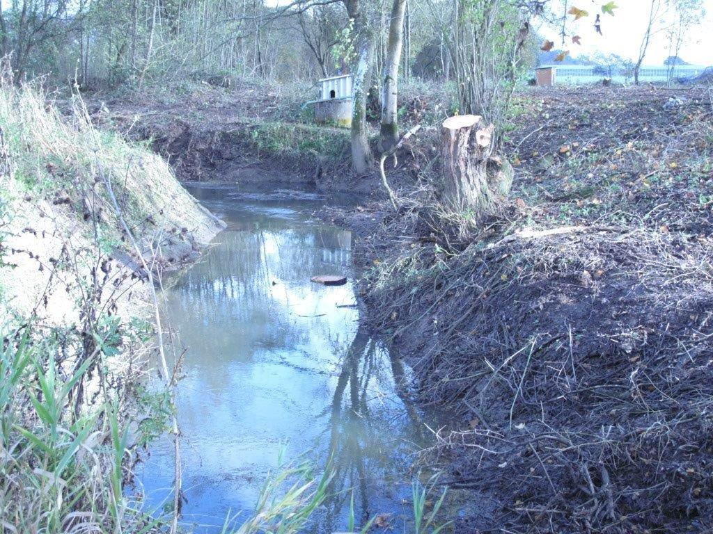 Cranleigh Flood Forum news