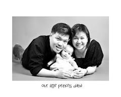 Our Happy Family - Princess Dana Diaries