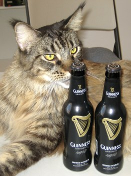 3-20-13 WW 2 Legend-Guinness Sniff