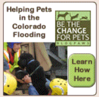 Helping Pets In The Colorado Flood Badge
