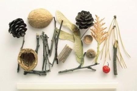 materiale- Ce minunatii poti crea din multimea de comori ale toamnei