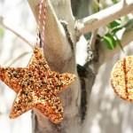 Hranitoare pentru pasari in forme de biscuiti – copiii adora sa le faca!