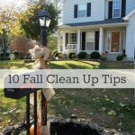10 Fall Clean Up Tips