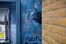 French stencil artist C215's cat art in East London