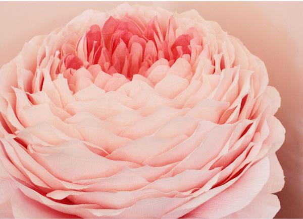 Paper Blossom 3