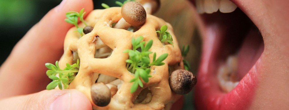 Edible-Growth-Project-Yields-the-Coolest-3D-Printed-Food-Gallery-461807-2