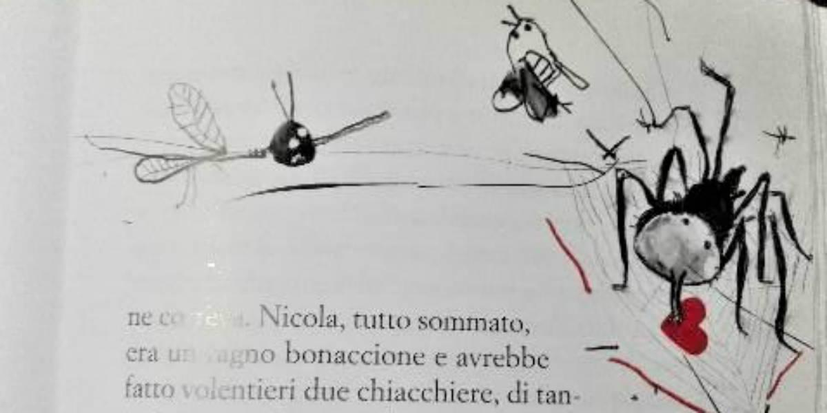 Nicola il ragno 1