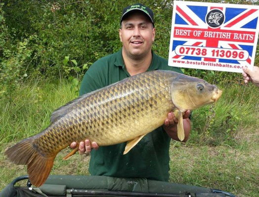 Cracking 38lb Common