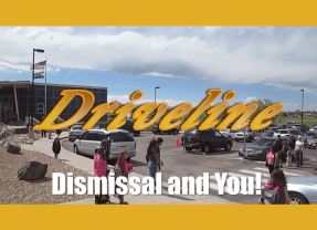 Driveline and You!