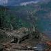 deforestation-indonesia