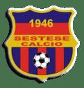 sestese_calcio