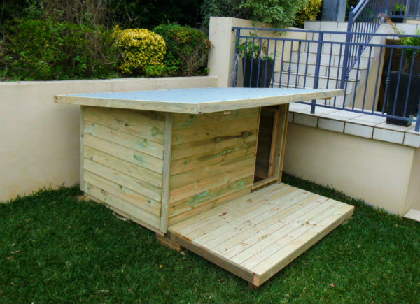 Large kennels dog houses new dog cubby sydney for Building a dog kennel business