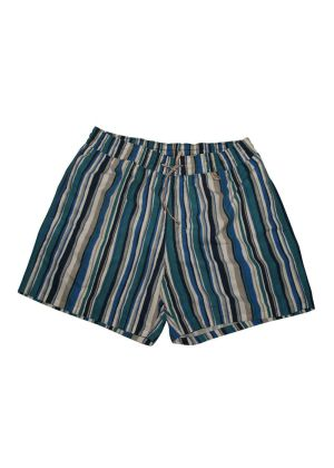 Loro Piana Swim Shorts Stripes