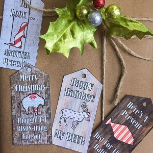 Silhouette Challenge Holiday Gift Tags | C&C