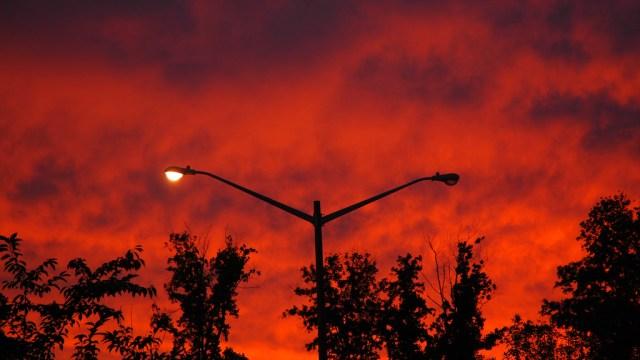Sunset Treat 8