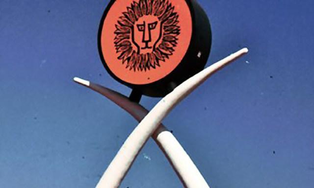 lioncountry-edit1