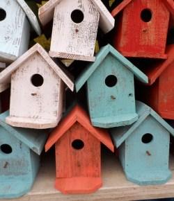 A House for Birds