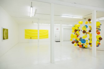 Installation view, The Western Code, Gallery Diet, Miami, Florida, January 2015. Courtesy of Gallery Diet, Miami, Florida.