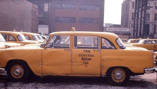 Checker Yellow-766