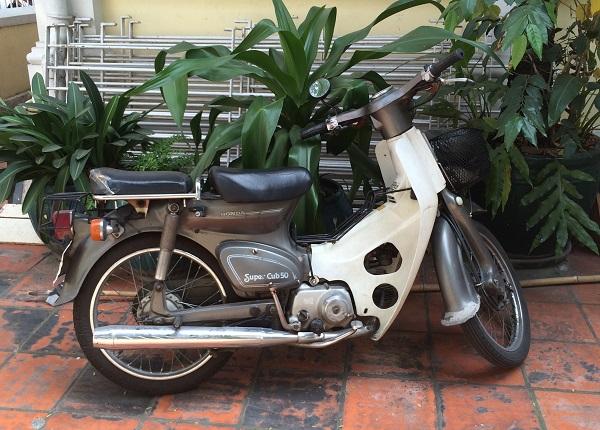1 Honda Super Cub in courtyard