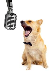 Singing a social media tune