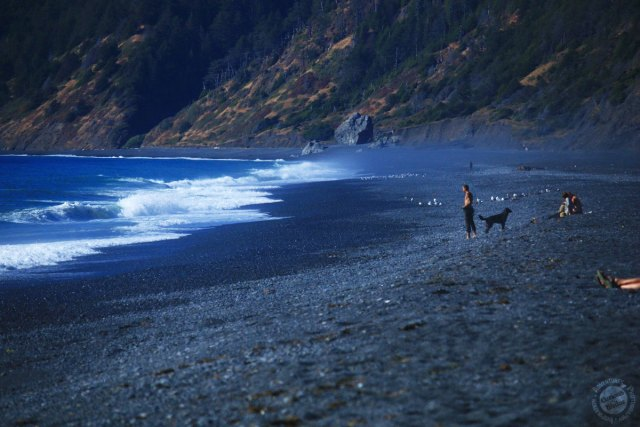 black sand beach california - west coast road trip