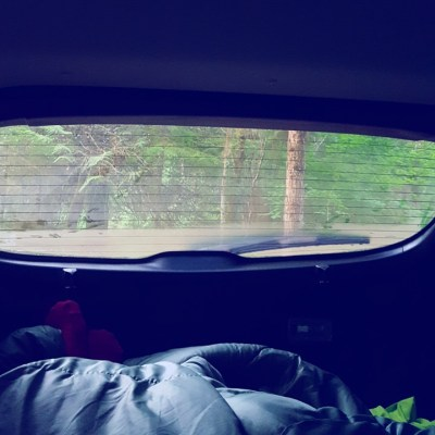 camping in the car on a west coast road trip