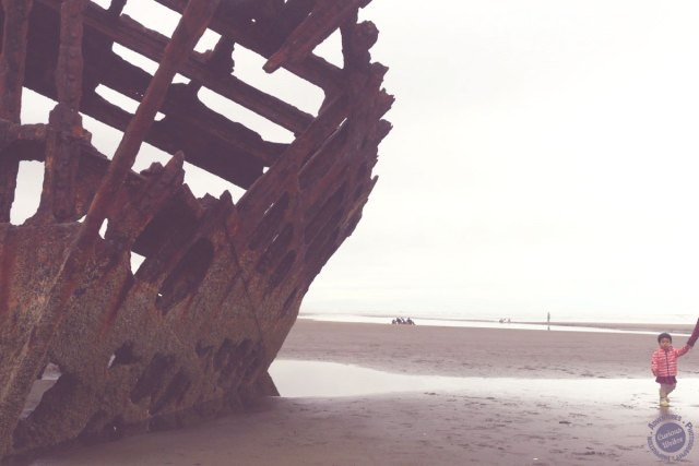 Shipwreck beach in oregon - west coast roadtrip