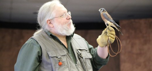 Mark Booth shows the audience a great horned owl. (Photos by Ann Marie Shambaugh)