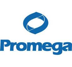 promega-logo_blue