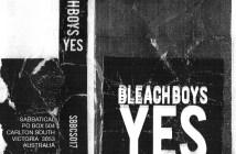 BleachBoys