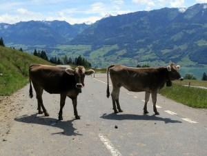 Swiss Toll Booth